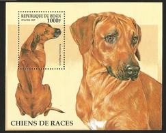 V) 1997 BENIN, DOGS, RHODESIAN RIDGEBACK, SOUVENIR SHEET, MNH - Benin - Dahomey (1960-...)