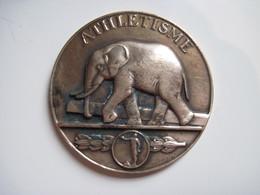 Médaille En Bronze ATHLETISME Graveur C. MASCAUX 1947 ELEPHANT  Diam 50 Mm TBE - France