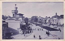 Cartolina Fiera Esposizione Di Milano - 1928. Il Viale D'accesso Da Via Domodossola. - Esposizioni