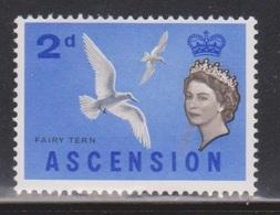 ASCENSION Scott # 77 MH - QEII & Bird - Fairy Tern - Ascension