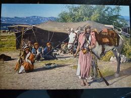 CARTE POSTALE _ CPA VINTAGE : AFRIQUE _ Bédouins Nomades         // CPA.L.GBUSA.95.22 - Andere