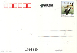 China 2016 Animal Bird Wild Goose Post Card - Oies