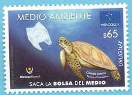 Uruguay 2019 ** MERCOSUR. Medio Ambiente. Tortuga - Naturaleza