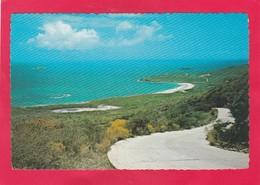 Modern Post Card Of Saint-Martin,Netherland Antilles,West Indies,L57. - Saint-Martin