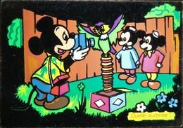 Disney Mickey Photographe Avec Neveu Feutrine Noire Quelle Surprise ! Couleur Vives - Disney
