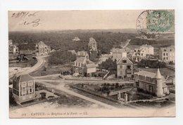 - CPA CAYEUX (80) - Brighton Et La Forêt 1906 - Editions Lévy 317 - - Cayeux Sur Mer