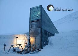Svalbard Islands Global Seed Vault New Postcard Spitzbergen AK - Norvège