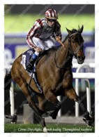 Ukraine | Postcard | Cirrus Des Aigles | Leading Thoroughbred Racehorse | Horse - Chevaux