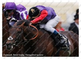 Ukraine | Postcard | Dartmouth | Leading Thoroughbred Racehorse | Horse - Chevaux
