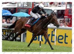 Ukraine | Postcard | Ouija Board | Leading Thoroughbred Racehorse | Horse - Chevaux