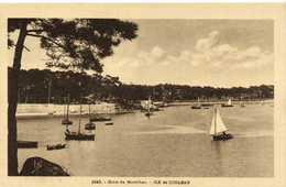 Golfe Du Morbihan ILE De CONLEAU  RV - Frankreich
