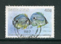 BAHAMAS- Y&T N°609- Oblitéré (poissons) - Bahamas (1973-...)