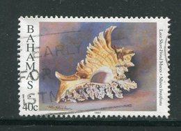 BAHAMAS- Y&T N°917- Oblitéré (coquillages) - Bahamas (1973-...)