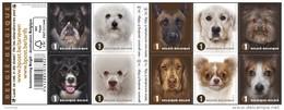 Boekje 145** Honden Naderbij 4383/92**  / Carnet 145 Faces De Chiens - Booklets 1953-....