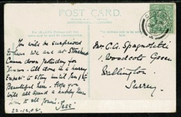 Ref 1296 - 1905 Waggoners Wells Postcard - Posted At Godalming Surrey Perfin Stamp S W & U - Great Britain