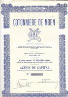 Cotonnière De Moen - Textiles