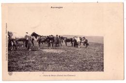 """4910 - Brion ( 63 ) - Foire De Brion ( Foirail Des Chevaux ) - Picard Fils N°1 - """" Auvergne """" - - Autres Communes"""
