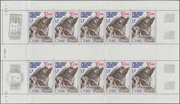 """Französische Gebiete In Der Antarktis: 1977, Antarctic Marine Life, 10fr. """"Eared Seal"""", Lot Of 150 S - Französische Süd- Und Antarktisgebiete (TAAF)"""