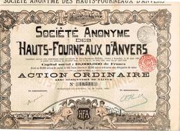 Ancien Titre - Société Anonyme  Des Hauts-Fourneaux D'Anvers - Titre De 1901 - Industrie