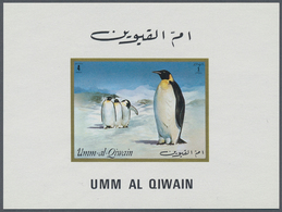 Umm Al Qaiwain: 1970/1972 (ca.), Collection In Stockbook With All Different Perf. And Imperf. Stamps - Umm Al-Qaiwain