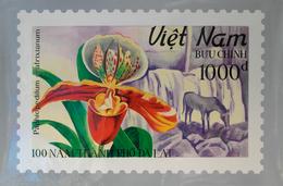 Thematische Philatelie: 1970's-90's Vietnam: Group Of Eleven Enlarged Photographs Of The Original Ha - Briefmarken