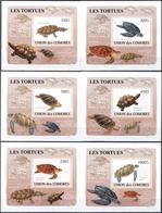 "Thematische Philatelie: 2006/2011. DeLuxe Collection Containing ""Stamps On Cardboard"" From Mozambiqu - Briefmarken"