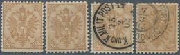 "Bosnien Und Herzegowina: 1900, Definitives ""Double Eagle"", 30h. Brown, Specialised Assortment Of 13 - Bosnien-Herzegowina"