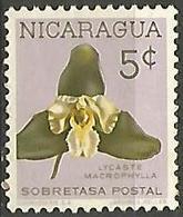 LSJP NICARAGUA FLOWERS - Nicaragua
