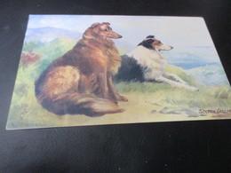 Fantasiekaart, Hond - Chiens