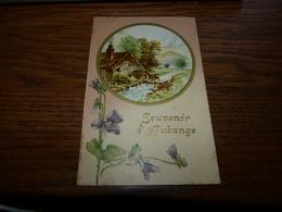 BC1-1-2 Souvenir D'Aubange 1906 - Aubange