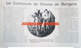 1900 CONCOURS CHIENS DE BERGERS LEVALLOIS PERRET - CLUB FRANCAIS DU CHIEN DE BERGER - Livres, BD, Revues