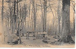 CHAVILLE - ( 92 ) - Forêt De Chaville - Chaville