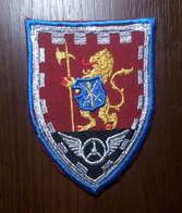 Patch 1004th Battalion Of Guard And Maintenance Of Command Of Land Forces UKRAINE Armed Forces - Scudetti In Tela