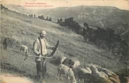 48 - TYPES LOZERIENS - Faucheur Et Son Troupeau En 1922 - France