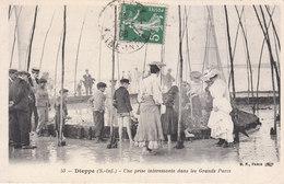 CPA DIEPPE (76) UNE PRISE INTERESSANTE DANS LES GRANDS PARCS - BELLE ANIMATION - Dieppe