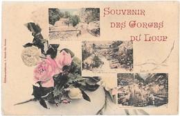 SOUVENIR DES GORGES DU LOUP - Fancy Cards