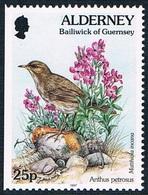 Alderney - Oiseau : Anthus Petrosus 101a (année 1997) ** - Alderney