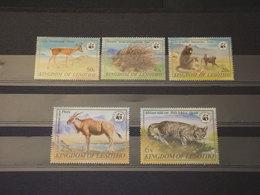 LESOTHO - 1981 WWF FAUNA 5 VALORI - NUOVI (++) - Lesotho (1966-...)