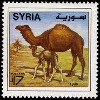 Syria 1998 Dromedaries Unmounted Mint. - Syria