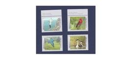G280. Canada / 1997 / Birds / Aves / Oiseaux - Sperlingsvögel & Singvögel