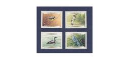 G282. Canada / 2000 / Birds / Aves / Oiseaux - Sperlingsvögel & Singvögel
