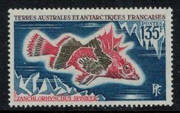 T.A.A.F. // 1972 // Timbre No. 45  Y&T Neuf** MNH, Poisson - Nuevos