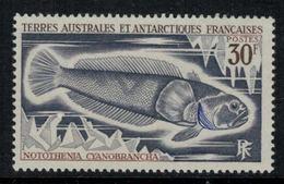 T.A.A.F. // 1971 // Timbre No. 38  Y&T Neuf** MNH, Poisson - Nuevos