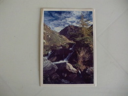Postcard Postal Italy Parco Naturale Orsiera Rocciavre Rio Del Selleries - Other Cities