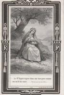 Marie Joséphine Ghislaine Van Naemen-st.nicolas 1868 - Devotion Images