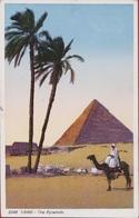 Egypte Egypt Cairo Le Caire The Pyramids Pyramiden Pyramide Pyramid Chefren Khéphren Camel Chameau - El Cairo