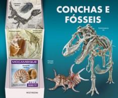 Z08 MOZ190224b MOZAMBIQUE 2019 Shells And Fossils MNH ** Postfrisch - Mozambico