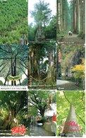 9 Télécartes Japon Japan Arbre Arbres Tree Forêt  Paysage (D 554) - Paysages