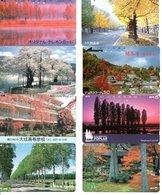 8 Télécartes Japon Japan Arbre Arbres Tree Forêt  Paysage (D 549) - Paysages