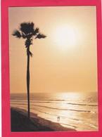 Modern Post Card Of Fajara Beach,Gambia,L58. - Gambia